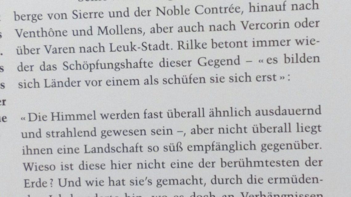 Blatten, Rilke, Rhone – 25.7.2019